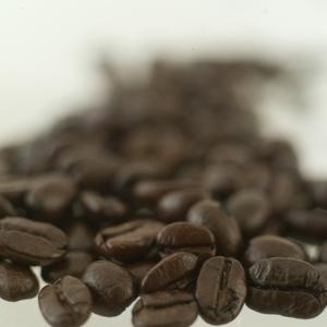 コーヒーの香りと美人に包まれていたハートブレーンの現在