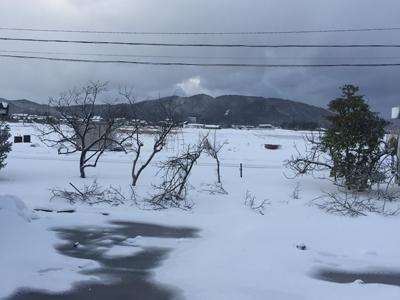 予報通り暴風雪となった福井県あわら市の現状